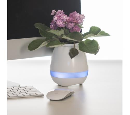Brinde caixa de som personalizada com vaso